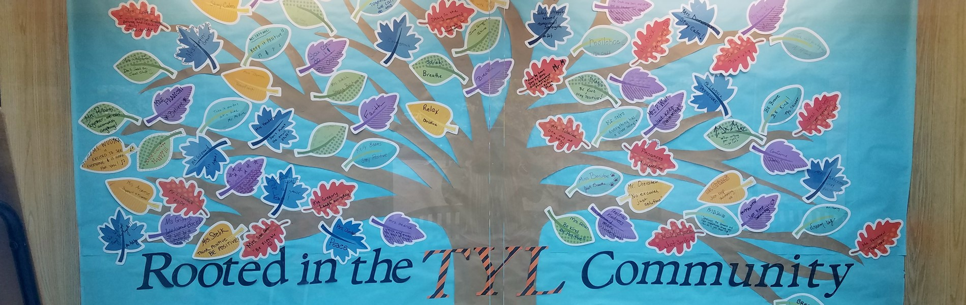 Tyl Rooted in the Community Tree